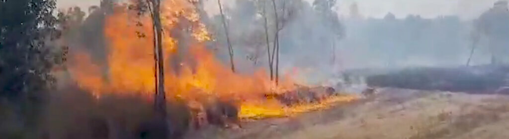 ICEJ: Fires in souther Israel
